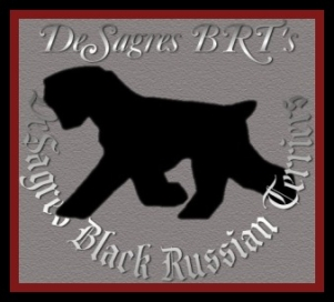 DeSagres Black Russian Terrier Logo..est.1995